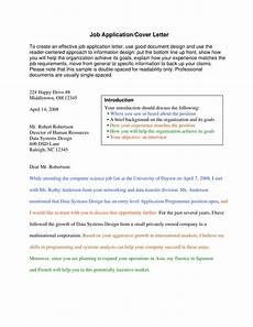 Professional Job Application Cover Letter 10 Professional Cover Letter Examples Pdf Examples