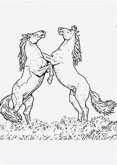 Pferde Malvorlagen Zum Ausdrucken Lassen Ausmalbilder Pferde Zum Drucken Ausmalbilder Malvorlagen