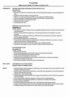 Sap Consultant Resume Sap Sd Consultant Resume Samples Velvet Jobs