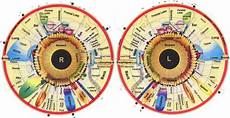 Iridology Diagnosis Chart 12 Best Iridology Charts Left Eye Chart Right Eye Chart