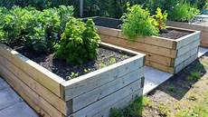 get the most out of your raised bed garden fox news