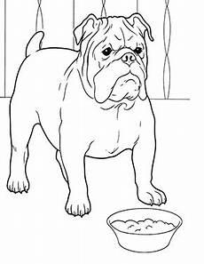 ausmalbild bulldogge hund zum kostenlosen ausdrucken und