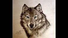 desenho de lobos como desenhar um lobo de olhos azuis