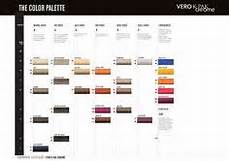 Joico Color Chart Joico Vero K Pak Color Age Defy Swatch Chart Hair In