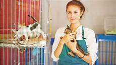 Part Time Babysitter Jobs 15 Best Part Time Jobs For High School Students