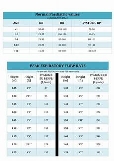 Flow Meter Chart Noraml Peak Flow Chart Templates At Allbusinesstemplates Com