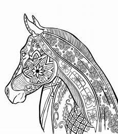 pferde 6 ausmalbilder f 252 r erwachsene