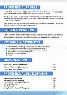 What Is Career Aspiration Corporate Blue Resume Design 187 Public Service Resumes