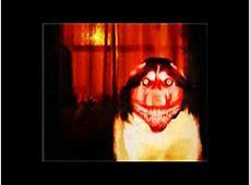 Summoning Creepypasta   How to summon Smile Dog   Wattpad