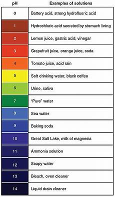 Shampoo Ph Levels Chart Understanding Your Hair Through Its Ph Level Morrocco Method