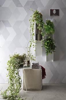 candele ornamentali piante o candele per decorare il bagno e la casa a casa