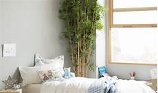 piante da letto le piante in da letto fanno casafacile