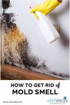 How To Get Rid Of Musty Smell In Furniture How Can You Get Rid Of A Mold Smell