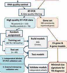 Chart Method Pcr Example Sample And Analysis Flowchart All Samples From Tb
