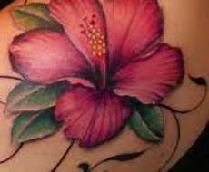 fiore ibisco significato tatuaggio hibiscus significato simbolo ed immagini