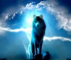 Lupo Lights Australia Quot Lighting Wolf Quot Travel Mugs By Tbuck168 Redbubble