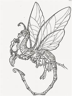Ausmalbilder Kostenlos Ausdrucken Dragons Coloring Pages Coloring Pages Free And Printable