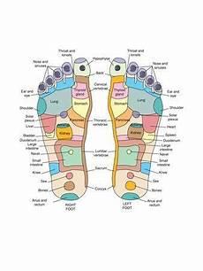 Norman Reflexology Foot Chart Reflexology Foot Map Artwork Photographic Print By Peter