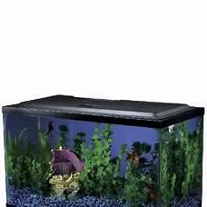 10 Gallon Fish Tank Light Hood 10 Gallon Fish Tank Hood W Led Light