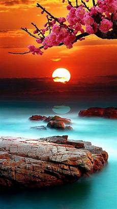 Iphone 7 Wallpaper Sunset by Sea Sunset Iphone 7 Wallpaper 750x1334