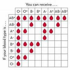 Transfusion Chart Why Can A Type O Person Donate Blood To All Other Blood