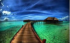 Hd Background Images 150 Tropical Hd Wallpapers Background Images Wallpaper
