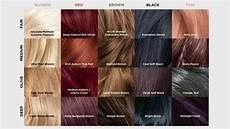 New Loreal Hair Color Chart Ideas With Pictures March
