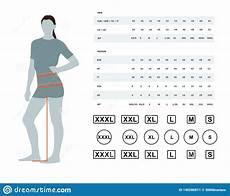 Size Chart For Women Stock Vector Illustration Of Body