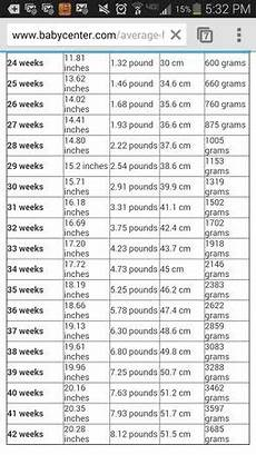 Baby Center Growth Chart Fetal Growth Chart Babycenter
