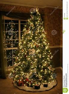 Free Images Of Christmas Trees Christmas Tree Stock Photo Image Of Cozy Lights Green