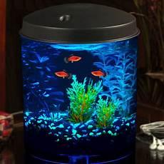 Imagitarium Aquarium Light Imagitarium 2 Gallon Cumberland Tank Petco In 2020