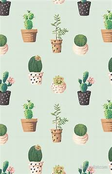 iphone 7 cactus wallpaper 649 best images about iphone wallpapers on