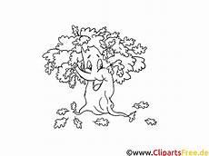 Herbst Malvorlagen Zum Ausdrucken Zum Ausdrucken Baum Herbstbilder Zum Ausdrucken
