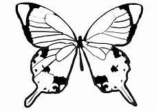 Malvorlagen Schmetterlinge Schmetterling Malvorlagen