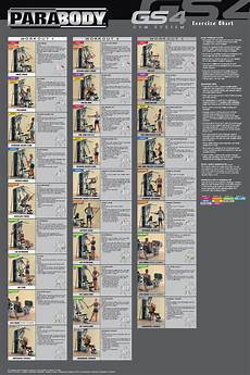 Parabody Home Gym Workout Chart Exercise Chart Workout Chart Gym Workout Chart