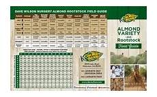 Almond Variety Chart Almond Variety Amp Rootstock Field Guide Dave Wilson Nursery