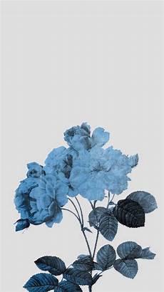 iphone blue aesthetic wallpaper clean clear skinb5 planos de fundo papeis de parede
