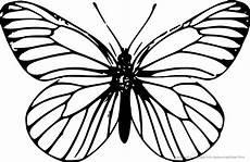 Ausmalbilder Tiere Schmetterling Ausmalbilder Tiere Ausmalbilder Schmetterling