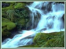 Animated Waterfall Background 49 Moving Desktop Wallpapers Look Real On Wallpapersafari
