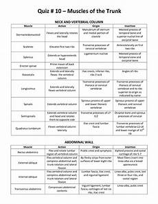 Muscle Action Chart Muscle List Action Origin Mrs Smutz Physical