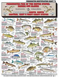 Today S Fishing Chart How To Identify Freshwater Species Shad Perch Walleye