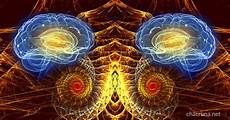 Dmt Effects The Dmt Experience The Human Brain Amp The Science Of