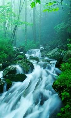 Live Wallpaper Nature For Iphone by Waterfalls Pictures For Screensavers Live Waterfall