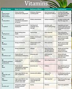 Vitamins And Their Sources Chart General Knowledge And Inspirations Vitamins Functions