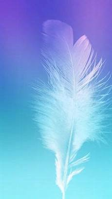 iphone blue feather wallpaper purple and blue color with white background