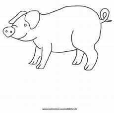 Schwein Malvorlagen Bilder Ausmalbilder Schwein Tiere Zum Ausmalen Malvorlagen