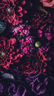 black floral wallpaper for iphone 5 floral iphone wallpapers to celebrate 65k