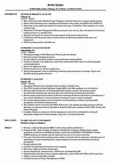 Project Analyst Resume Sample It Project Analyst Resume Samples Velvet Jobs