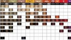 Joico Vero K Pak Hair Color Chart Joico Vero K Pak Color Swatches Hair Color Chart Joico