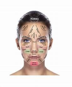 Face Reflexology Chart 11 Reflexology Chart Templates Free Sample Example